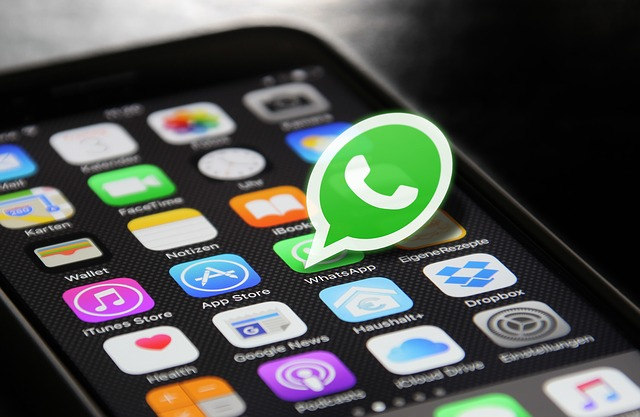WhatsApp, una de las redes sociales de mayor importancia